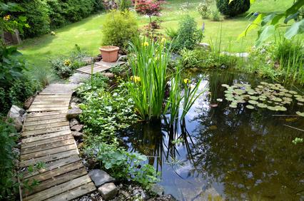 von der planung bis zum fertigen gartenteich – wassertechnik, Garten und Bauen