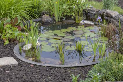 Von Der Planung Bis Zum Fertigen Gartenteich